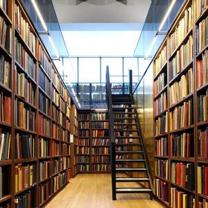 Библиотеки Белинского